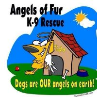 Angels of Fur K9 Rescue