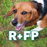 Rescue + Freedom Project
