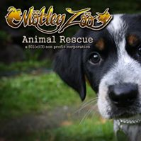 Motley Zoo Rescue
