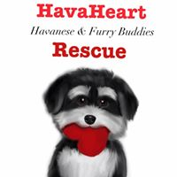 Hava Heart Rescue