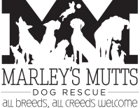 Marley's Mutts/Pawsitive Change