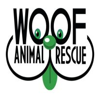 Woof Animal Rescue